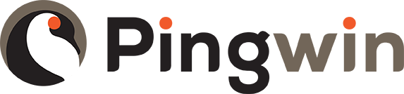 Pingwin | Online Marketing Bureau Amsterdam