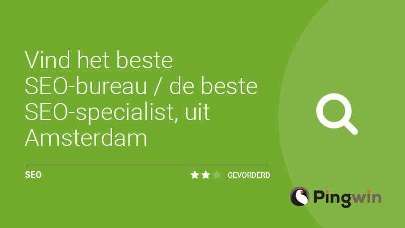 Beste Seo Bureau.Het Beste Seo Bureau Seo Specialist Pingwin Online Marketing